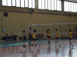 06-06-team_volley