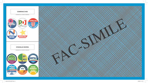 06-09-fac-simile-scheda-large