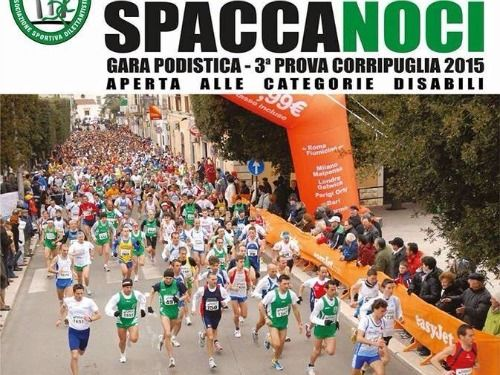 Spaccanoci