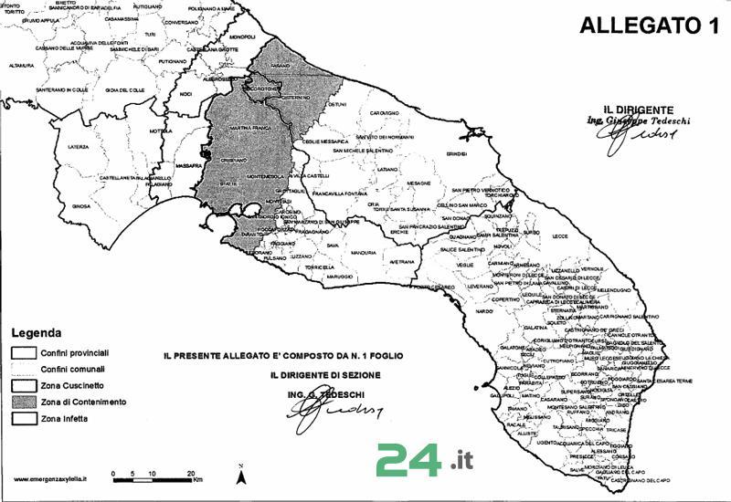 Noci24 It Xylella Nuova Delimitazione Delle Zone Infetta Cuscinetto E Di Contenimento